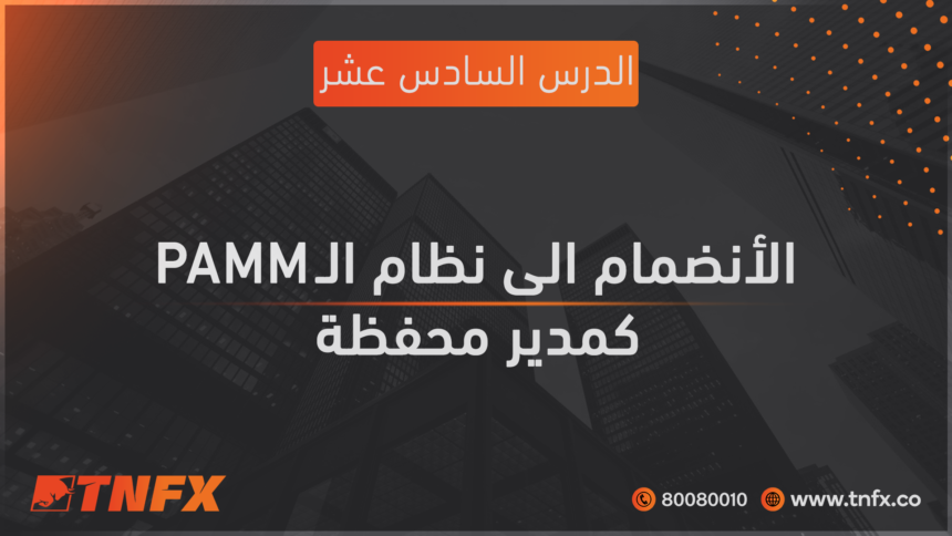 Join the PAMM system as a portfolio manager
