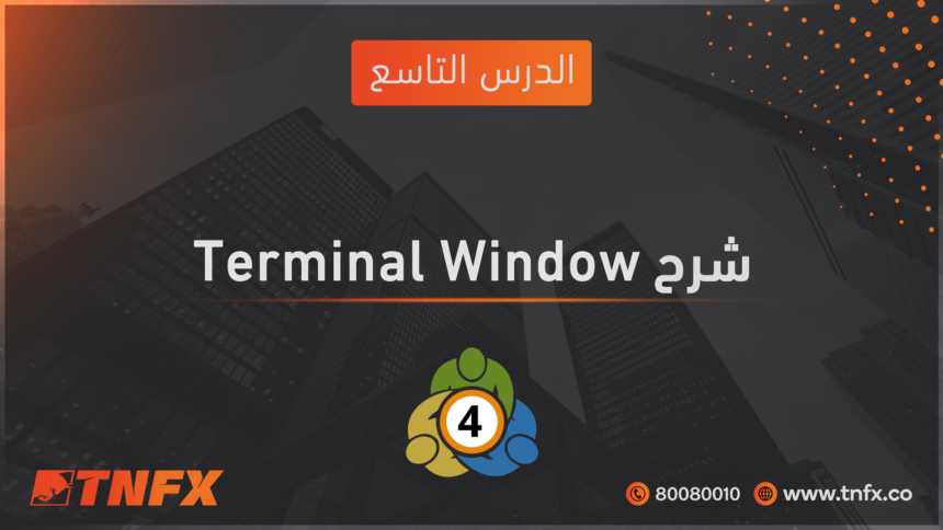 Explanation of the terminal window